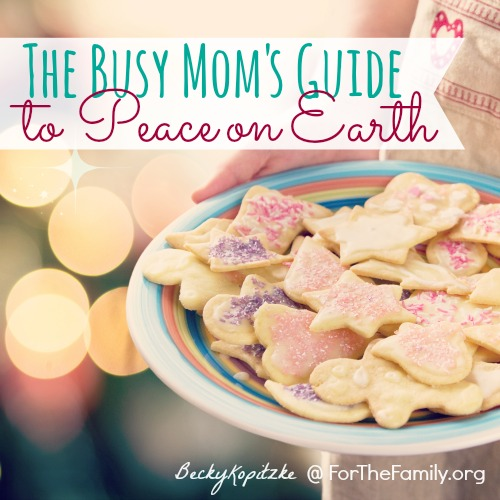 The Busy Mom's Guide to Peace on Earth