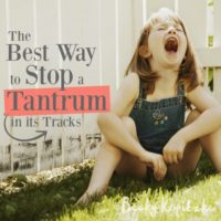 best-way-stop-tantrum