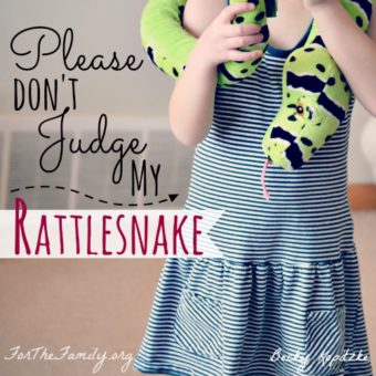 Please Don't Judge My Rattlesnake