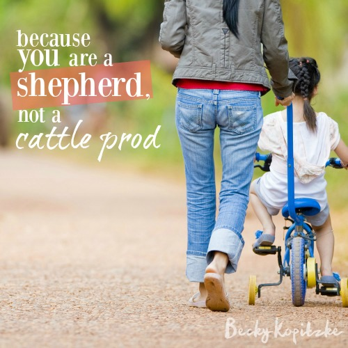 Because you are a shepherd, not a cattle prod